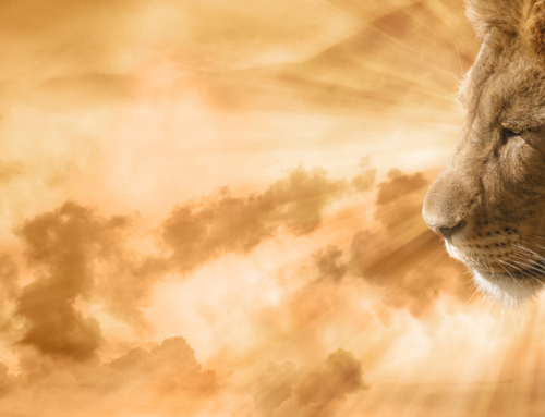 The Lion Hath Roared! Who Can But Prophesy?